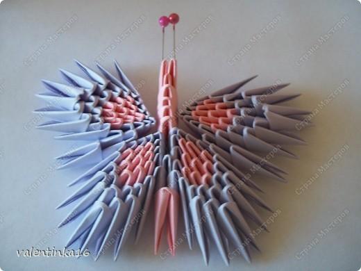 Модульное оригами - бабочка-5.