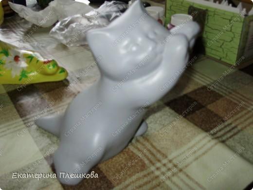 Кошак фото 2