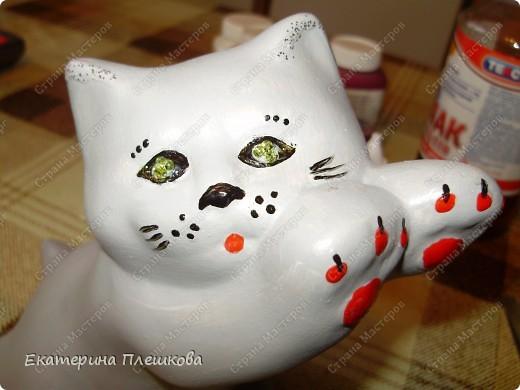 Кошак фото 4
