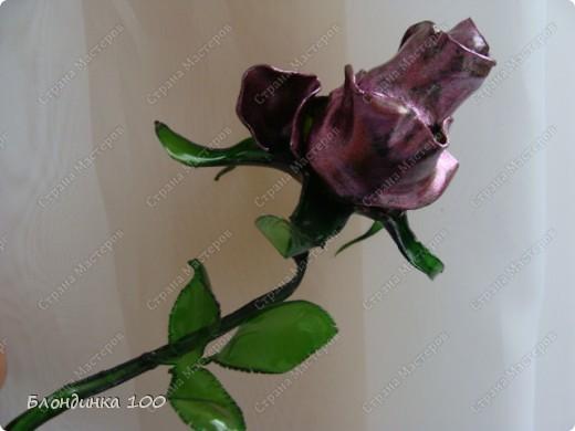 Цветок сделан из пластиковой бутылки. фото 1