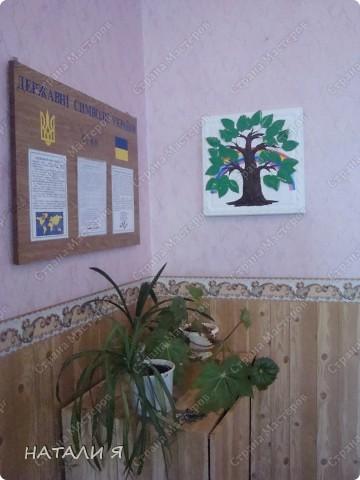 Вот какое дерево теперь живет в нашем классе. фото 4