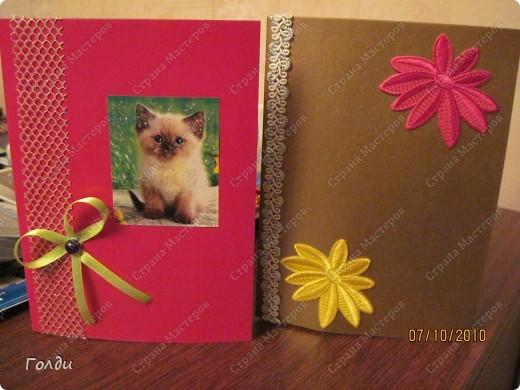 слева открытка для девочки Даши, справа - для бабушки. У них в один день день рождения,накануне Вике пришлось потрудиться)) фото 1