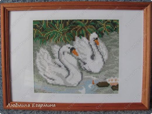 """Картина """"Лебеди на пруду"""""""