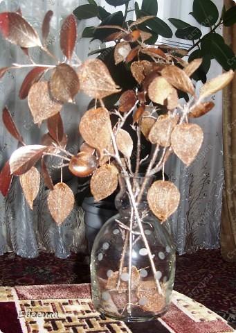 Веточки черноплодной рябины тоже покрыты аэрозольной краской фото 2