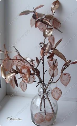 Веточки черноплодной рябины тоже покрыты аэрозольной краской фото 1