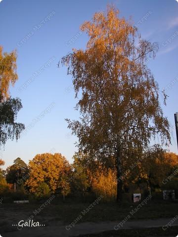 р.Днепр 23.10.2010 фото 6
