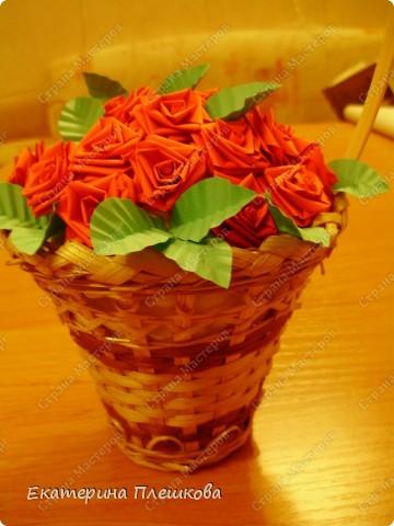 Миллион алых роз... фото 2