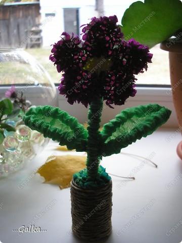 такой вот весёленький цветочек случайно получился :)  фото 3