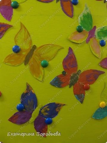 Вот такие бабочки полетели у нас в группе. фото 2