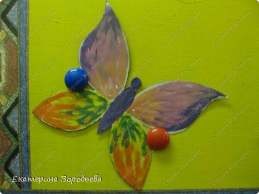 Вот такие бабочки полетели у нас в группе. фото 3