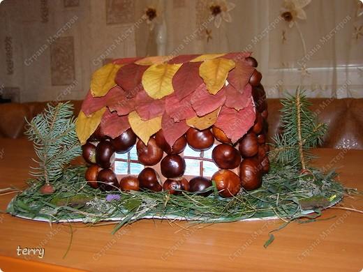 Такой домик и полянку мы с дочкой сделали на школьную выставку, посвящённую дарам Осени. Ведь Осень - неоценимая помощница нашим творениям. Она и материал даёт, и вдохновение - твори!!! фото 2