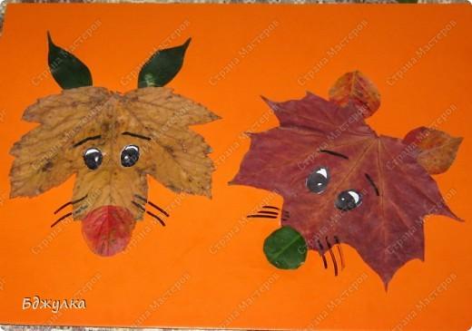Весёлые лисички