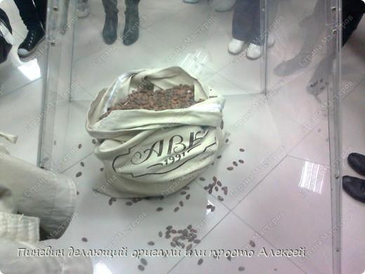 Сегодня я ходил в музей шоколада. и меня ето так впечетлило что я решил поделится етим с вами. фото 4