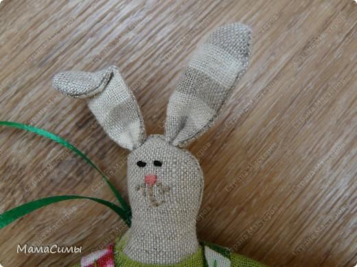 Портрет зайца. фото 1