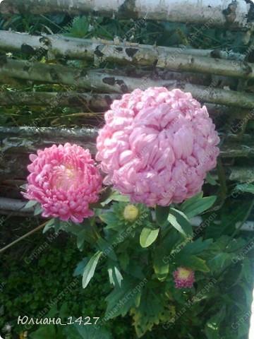 Садовое искусство 2 фото 7