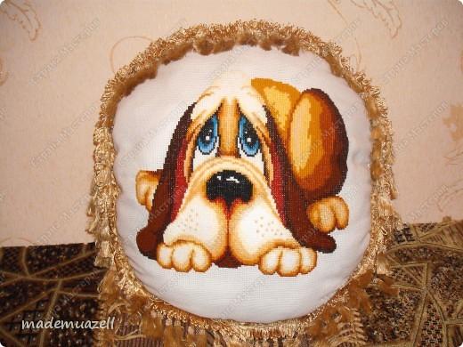 Собака - друг человека !!!