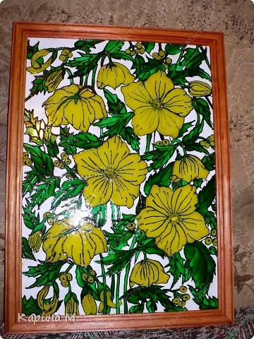 Желтые цветы фото 1