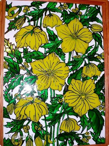 Желтые цветы фото 2