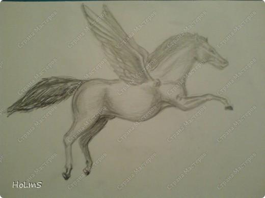 коментируем пожалуйста коня и меня:-) фото 1
