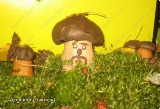 Гриб- боровик на лесной полянке