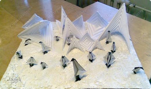 Пингвины во льдах фото 2
