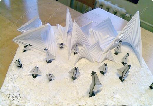 Пингвины во льдах фото 1