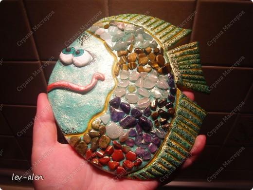 Рыбка Хозяйка Медной горы фото 6