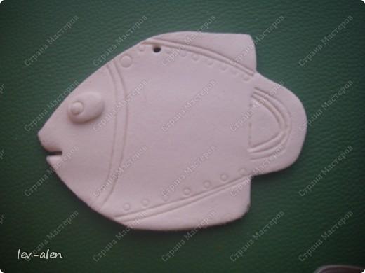 Рыбка Южная Америка фото 4