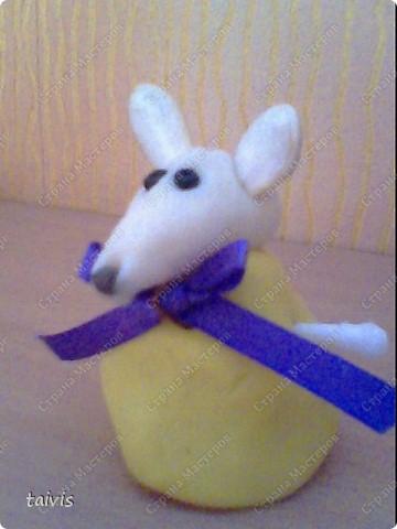 Соленые мышата. фото 5