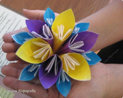 один цветок фото 11