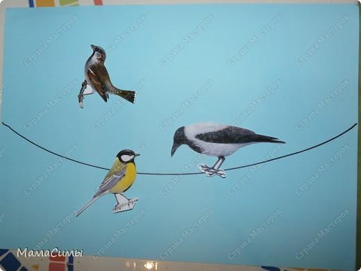 Птички наши летали и устали. Сели отдохнуть на провод. фото 1