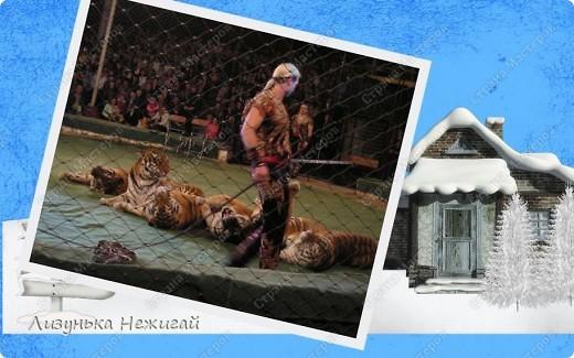 Цирк,цирк,цирк!!! фото 16