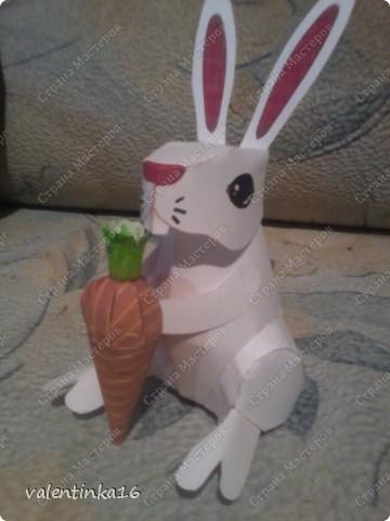 С морковкой фото 3