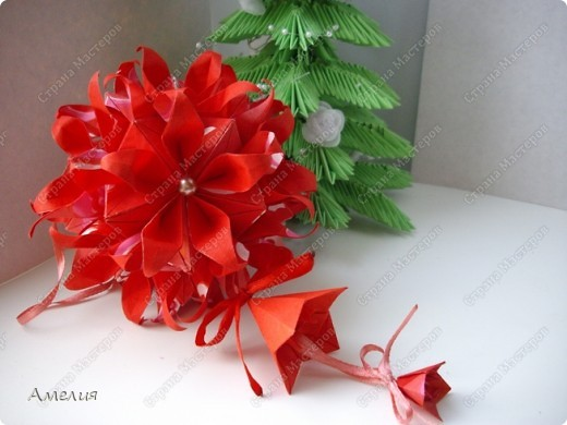 Новогодняя Passiflora фото 3