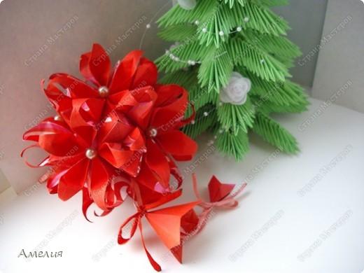 Новогодняя Passiflora фото 4