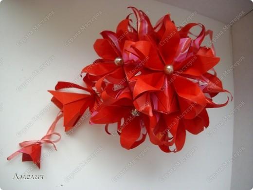 Новогодняя Passiflora фото 5
