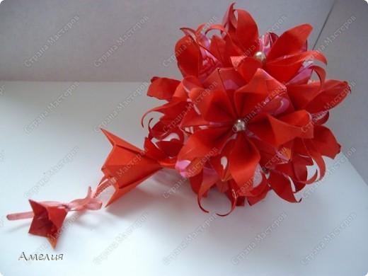 Новогодняя Passiflora фото 6