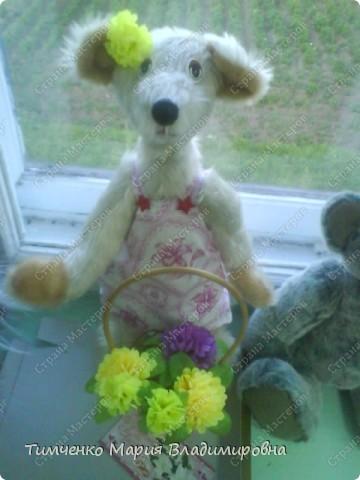 медведь (мягкая игрушка)