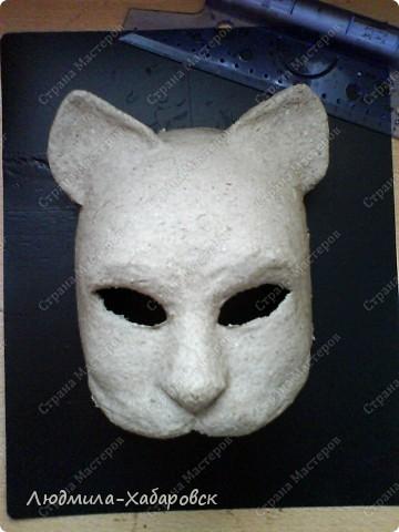 Вот такая кошачья  маска к празднованию НГ у меня получилась... фото 4