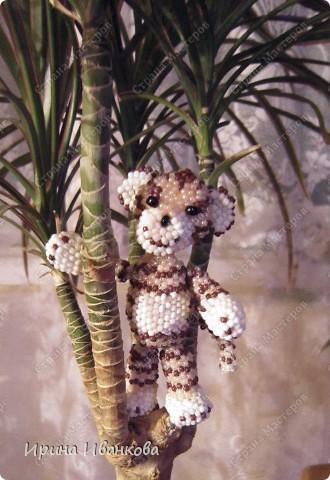 Ну вот и я добралась до игрушек))) Делала я тигренка по МК Ульяны Волховской http://www.artbiser.dp.ua/galery/tigr.html  Помучилась я изрядно, несколько раз распускала - нет опыта плетения по схемам. фото 1