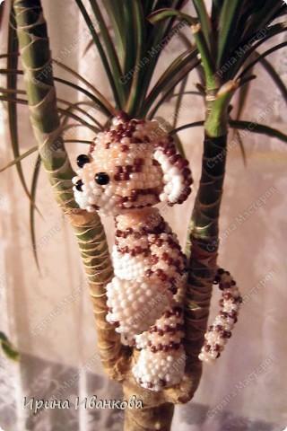 Ну вот и я добралась до игрушек))) Делала я тигренка по МК Ульяны Волховской http://www.artbiser.dp.ua/galery/tigr.html  Помучилась я изрядно, несколько раз распускала - нет опыта плетения по схемам. фото 2