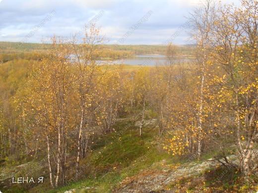Повспоминаем чудесную осень..... фото 3
