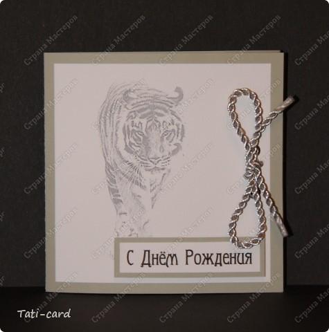 Тигру на День Рождения фото 1