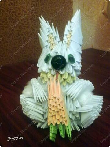 Кролик - символ 2011 года! фото 1