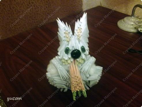 Кролик - символ 2011 года! фото 3