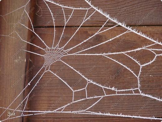 приветствую всех, ко зашёл в гости  мы опять немного помастерили) как делаются такие звёздочки, можно посмотреть здесь, http://crimsonxreign.deviantart.com/art/paper-star-tutorial-108431867    фото 12