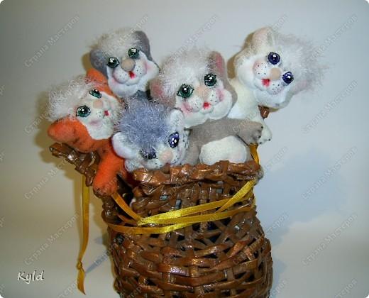 Вы послушайте, ребята, Я хочу вам рассказать: Родились у нас котята- Их по счету ровно пять! Мы решали, мы гадали: Как же нам котят назвать? Наконец, мы их назвали: Раз, Два, Три, Четыре, Пять. фото 1