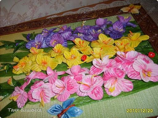 вот они мои новые гладиолусы,свои первые я лепила очень давно,только они были в холодном цвете,а эти напоминают лето... фото 2