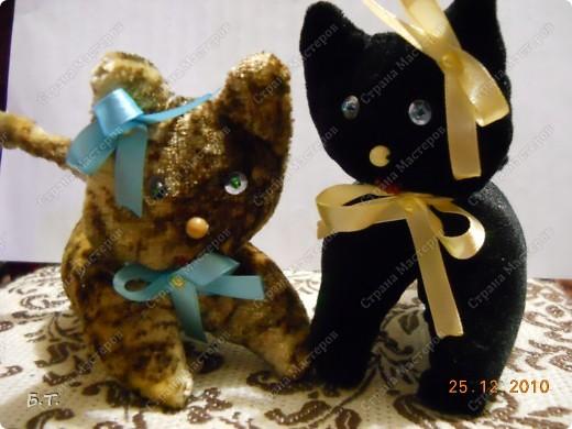 Два котика и зайчик фото 3