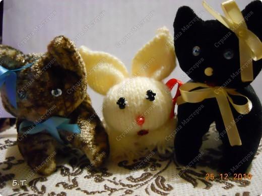 Два котика и зайчик фото 1